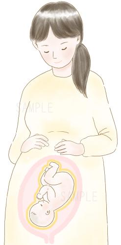 胎内で皮脂に守られている赤ちゃん