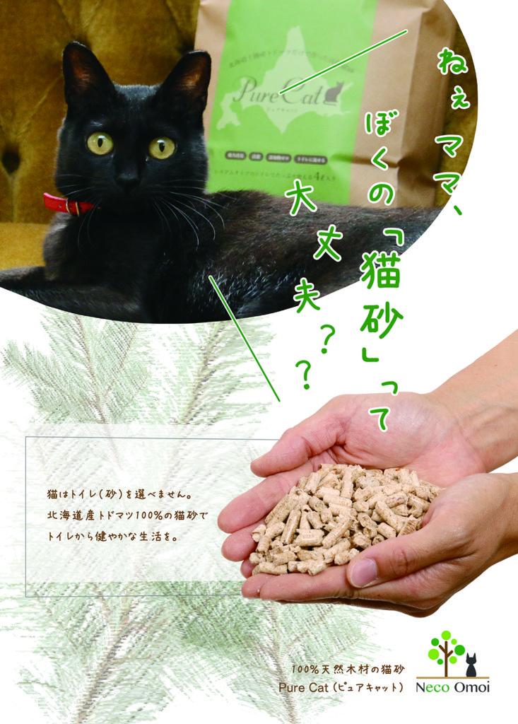 猫砂フライヤー表面画像