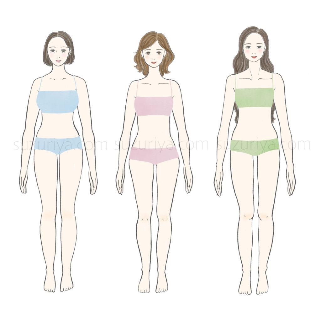 骨格診断3タイプ(正面)の女性イラスト